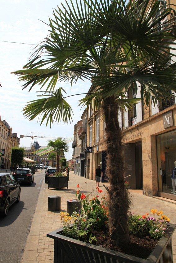 Le centre ville - Bergerac piscine municipale ...